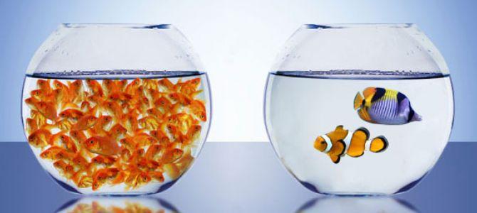 Cantidad vs. Calidad en social media